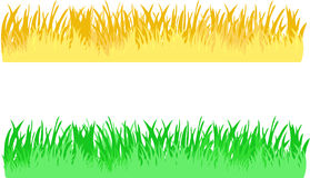 Grass border vector Stock Photo