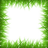 Grass Border Royalty Free Stock Images