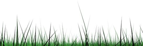 Grass border wide screen Stock Photo