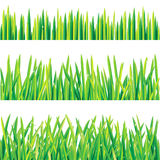 Grass borders. 3 green grass borders with water drops stock illustration