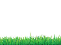 Grass borders background. Empty space for text or images Royalty Free Stock Photography