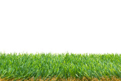 Isolated Grass Border Royalty Free Stock Photo