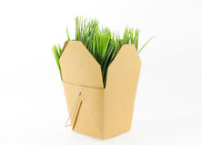 Grass Box Stock Image