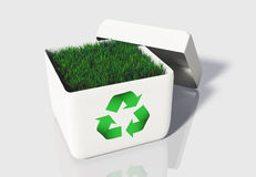 Grass into a box of recycling Royalty Free Stock Photos