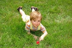 Grass boy Royalty Free Stock Images
