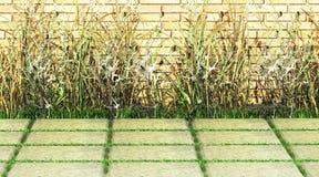 Grass, Brick, sidewalk. Royalty Free Stock Images