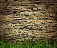 Grass and brick wall Stock Image
