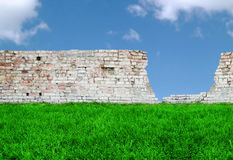 Grass, brickwall and sky royalty free stock images