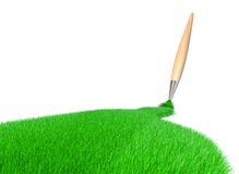 Grass brush Stock Image