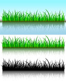 Grass brushes Stock Photos