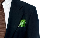 Grass in a business suit pocket Stock Photography
