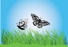 Grass with butterflies Royalty Free Stock Photos