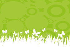 Grass and butterflies. Royalty Free Stock Images