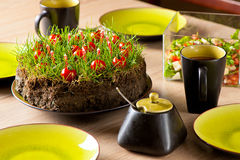 Grass cake. An improvised garden cake made from ground, grass, candles and cherry tomatoes Stock Images
