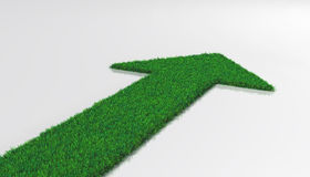 Grass carpet with arrow Royalty Free Stock Photo