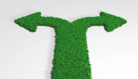 Grass carpet with arrows Stock Image