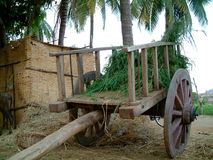 Grass on cart. Grass on hand driven wooden cart Royalty Free Stock Photos