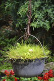 Grass in a cauldron. In village Stock Image