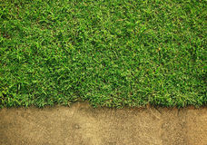 Grass and cement Royalty Free Stock Photo