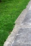 Grass and cement floor Stock Photo