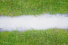 Grass with cement. On the road Stock Images