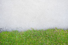 Grass with cement. On the road Stock Photo
