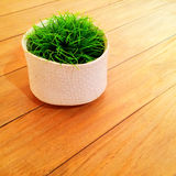 Grass in ceramic vase decorating a table Royalty Free Stock Photo