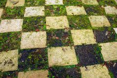 Grass checkerboard. Checkerboard pattern in a garden made of grass and stone tiles with twigs and old leaves lying around Stock Photography