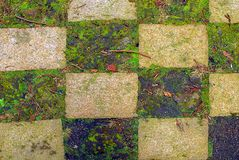 Grass checkerboard. Checkerboard pattern in a garden made of grass and stone tiles with twigs and old leaves lying around Stock Image