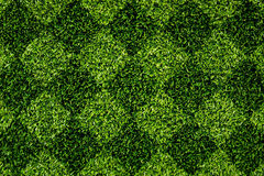 Grass Checkered Royalty Free Stock Photography