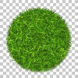 Grass circle 3D. Green plant, grassy round field, isolated white transparent background. Symbol of globe sphere, fresh. Nature design, clear earth. Ecology Royalty Free Stock Photo