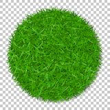 Grass circle 3D. Green plant, grassy round field, isolated white transparent background. Symbol of globe sphere, fresh. Nature design, clear earth. Ecology Royalty Free Stock Images