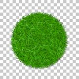 Grass circle 3D. Green plant, grassy round field, isolated white transparent background. Symbol of globe sphere, fresh. Nature design, clear earth. Ecology Stock Photo