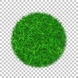 Grass circle 3D. Green plant, grassy round field,  white transparent background. Symbol of globe sphere, fresh. Nature design, clear earth. Ecology design Save Stock Images