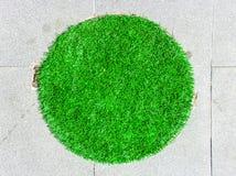 Grass circle floor Stock Photos