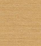 Grass Cloth. Finely woven grass cloth wallpaper Royalty Free Stock Images