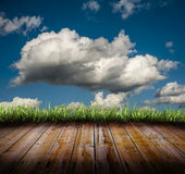 Grass and clouds Stock Images