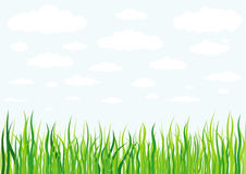 Grass clouds and sky background Stock Photography