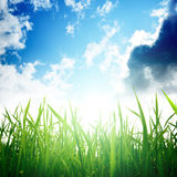 Grass and cloudy sky Royalty Free Stock Photography