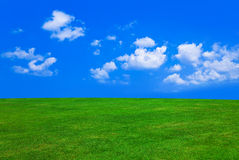 Grass and cloudy sky. Abstract nature background Royalty Free Stock Image