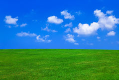 Grass and cloudy sky. Abstract nature background stock photo
