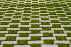 Grass and cobblestone pavement , checkered floor Stock Image