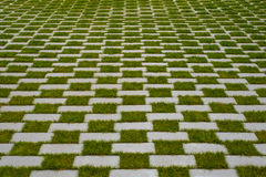 Grass and cobblestone pavement , checkered floor Stock Images