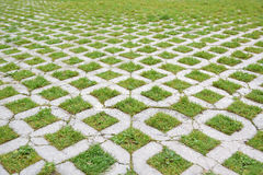 Grass and cobblestone walk way in a urban park. Vanishing point. Background Royalty Free Stock Photos