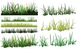Grass collection. Vector of different grass pattern Royalty Free Stock Photography