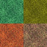 Grass colorful collection. Four seamless patterns with grass. Grass colorful collection. Four seamless patterns with grass Royalty Free Stock Images