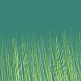 Grass colorful endless pattern Royalty Free Stock Photography