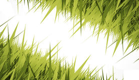 Grass concept card Royalty Free Stock Photography