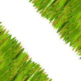 Grass coner border. Grass for text frame and picture  frame Royalty Free Stock Images