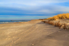 Grass covered dunes shores Baltic Sea royalty free stock photos